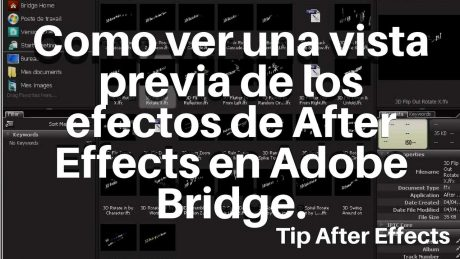 Vista previa de efectos de After Effects en Bridge